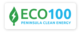 ECO100_logo-button